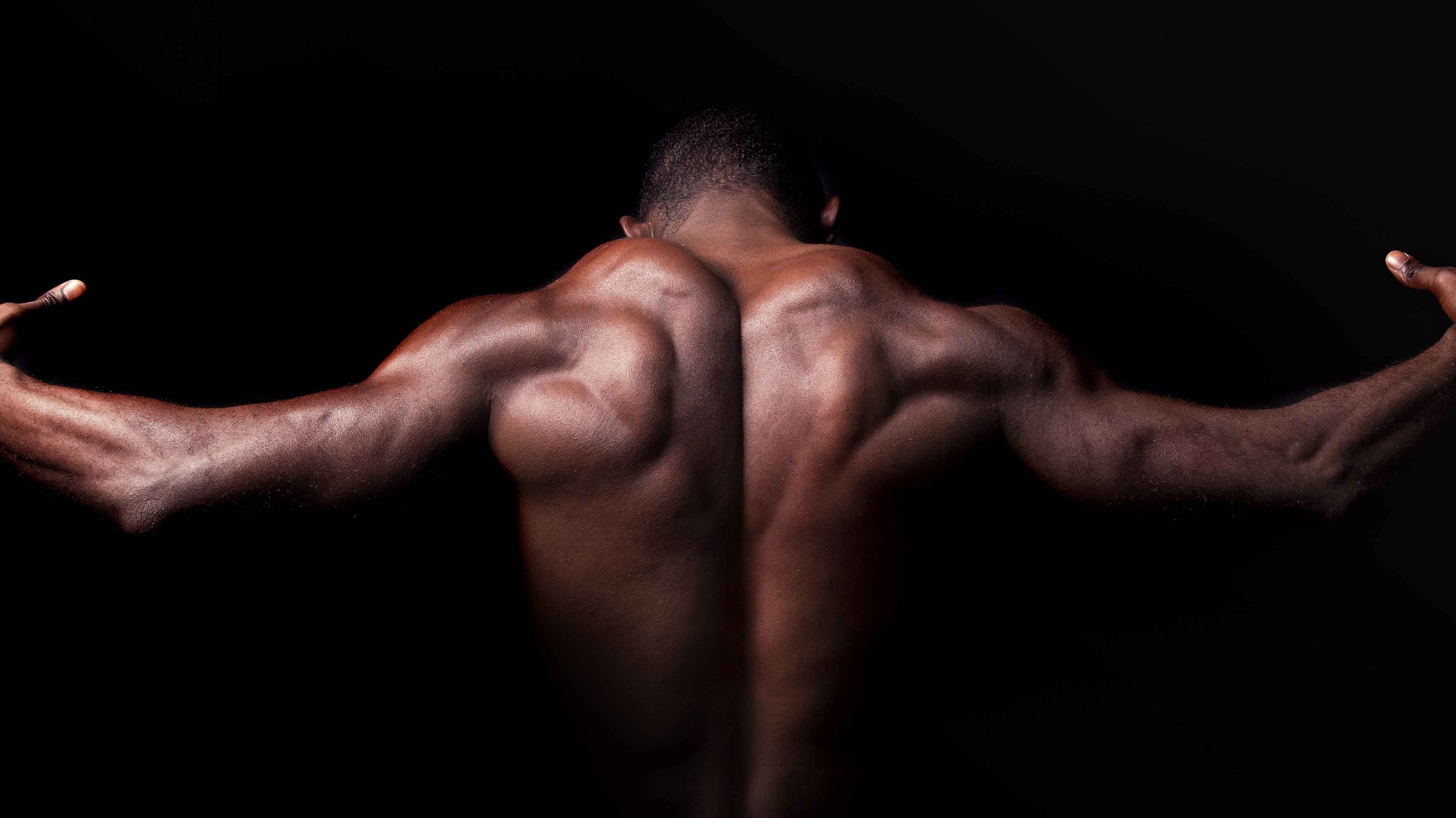 The Principles of Building Muscle